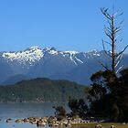 Manapouri by davidandmandy