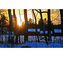 Sunset Through the Trees Late One Winter Photographic Print