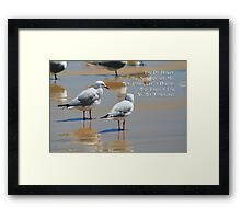Seagull Dolphin or Fish? Framed Print