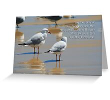 Seagull Dolphin or Fish? Greeting Card