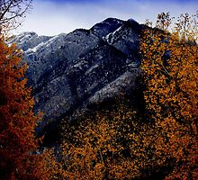 Autumn In The Rockies by davidandmandy