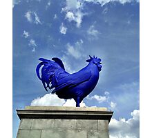 Katharina Fritsch's Hahn/Cock, London Photographic Print