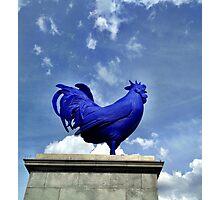 Katharina Fritsch's Hahn/Cock, London Photographic Print