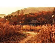 Fall colors of Korean temple Photographic Print