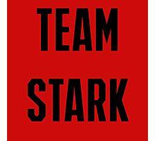 Civil War: Team Stark Photographic Print