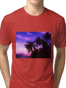 Palm Paradise - Pink and Purple Tri-blend T-Shirt