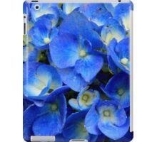 Blue Hydrangea in the Garden    ^ iPad Case/Skin