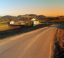 Country road into evening scenery | landscape photography by Patrick Jobst