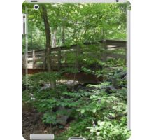 Dunnfield Creek Bridge -NJ iPad Case/Skin