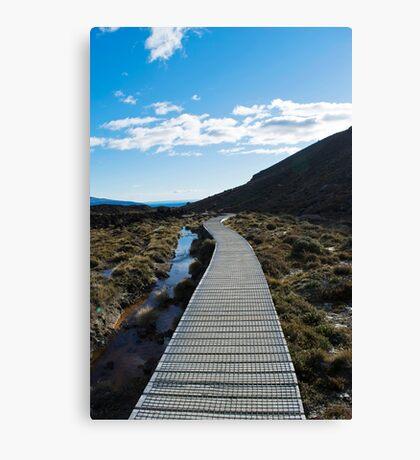 Boardwalk in Tongariro National Park (5) Canvas Print