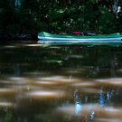 Canal canoe. by Paul Pasco