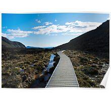 Boardwalk in Tongariro National Park (6) Poster