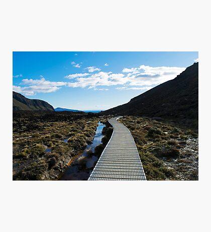 Boardwalk in Tongariro National Park (6) Photographic Print