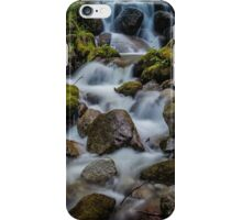 Jungle Stream iPhone Case/Skin