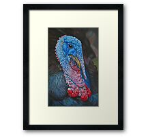 Turkey Boy Framed Print