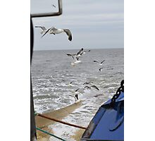 Seaguls and fishermansboat. Photographic Print