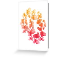 Boy & Butterfly Greeting Card