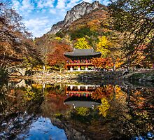 Fall temple reflections by aaronchoi