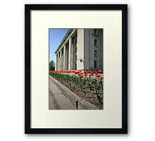 terry red tulips Framed Print