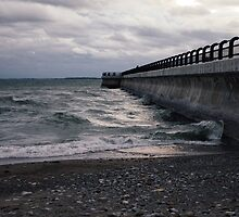 Dark Beach, Lake Ontario by Kyra Savolainen
