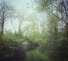 Life Path by Olivia Joy StClaire