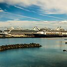 Ruby Princess and ms Amsterdam-Seattle by Ian Phares