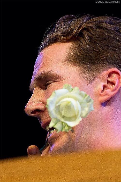 Benedict Cumberbatch by jaynematt