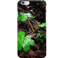 Wet Leave In The Dark iPhone Case/Skin