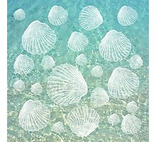 Sea Shells and Clear Water, #redbubble, #abstract, #ocean, #pattern Photographic Print