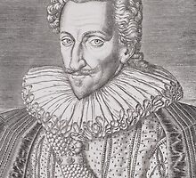 Henri IV (1553-1610) as King of Navarre by Bridgeman Art Library