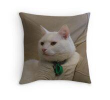 Harry 3 Throw Pillow