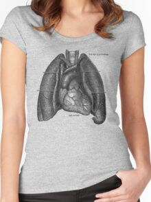 anatomical drawing of lungs and heart Women's Fitted Scoop T-Shirt
