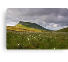 Summertime at Pen Y Ghent Canvas Print