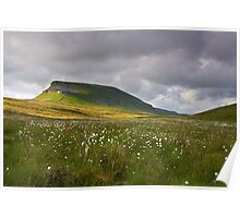 Summertime at Pen Y Ghent Poster