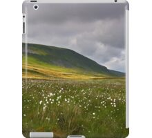 Summertime at Pen Y Ghent iPad Case/Skin