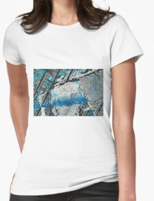 Blue Canyons Colliding Womens Fitted T-Shirt