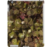 small clover with raindrops and one aphid  iPad Case/Skin