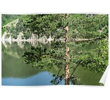 Summer in the Mountains - Forest Lakes and Pine Trees Beauty Poster