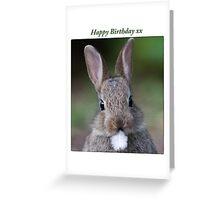 Cute Bunny - Happy Birthday Greeting Card