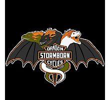 Dragon Cycles Photographic Print