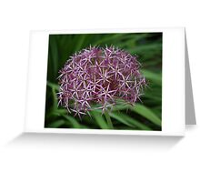 Star Dome Greeting Card