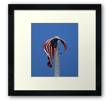 Old Glory~ Framed Print