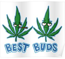 Best Buds Shading Poster