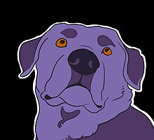 Dramatic Lab in Violet by oliveriley