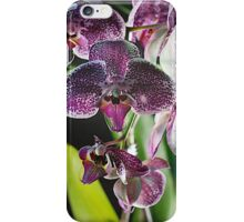 Orchid-3 iPhone Case/Skin