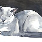Cat Naps: The Bookend by Denise Faulkner