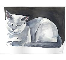 Cat Naps: The Bookend Poster