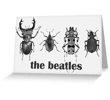 the beatles coleoptera Greeting Card