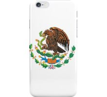 The Flag of Mexico iPhone Case/Skin