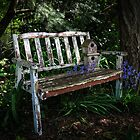 Garden Bench by 1bluecanoe